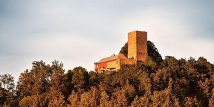 Château-fort d'Yburg